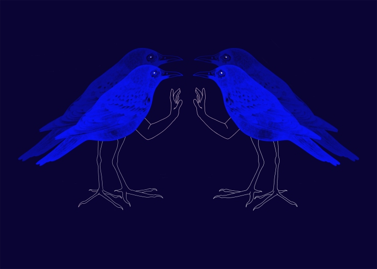 duo_oiseauxbleusDOUBLE_A4