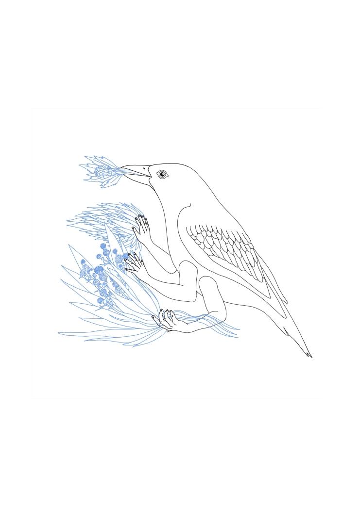 OiseauBleu_A4_OK